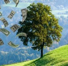 A prosperidade